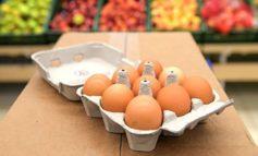 Нерюнгринская птицефабрика готова продавать яйца девятками