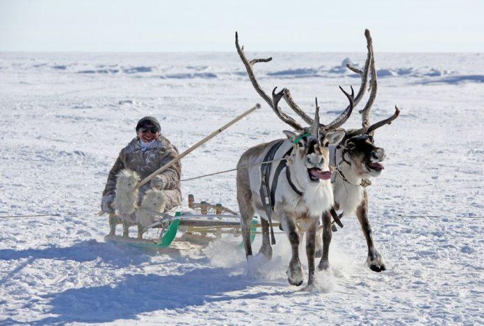 В Якутии широко отметят День Арктики