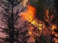 В Верхоянском районе игнорируют ситуацию с природными пожарами — Минэкологии Якутии