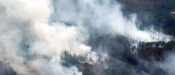 В Якутии тушат 8 лесных пожаров. Всего зарегистрировано 66 термоточек