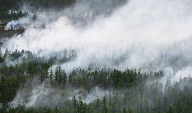 МЧС: в Якутске и Намском улусе сохраняется высокий класс пожароопасности леса
