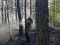 Лесной пожар действует в двух километрах от села в Намском районе