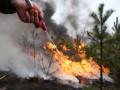 На западе и севере Якутии ожидается превышение параметров пожарной опасности — Минприроды