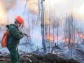 Восемь лесных пожаров действуют на территории Якутии