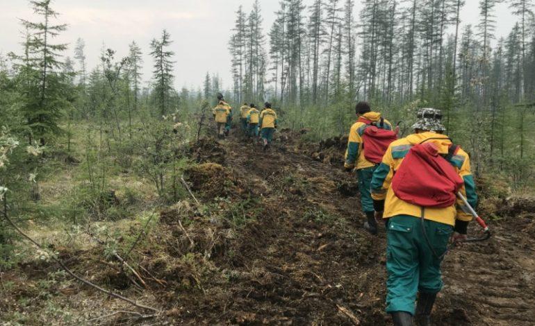 В Якутии ликвидировано два лесных пожара