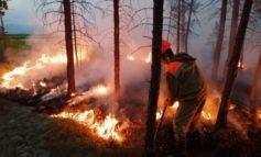 В Якутии ликвидировали 12 природных пожаров