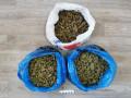 2,5 кг растительных наркотиков изъяли у 21-летнего жителя Якутска
