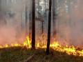 Прокуратура начала проверку по факту лесного пожара у села Сутуруоха Абыйского района Якутии