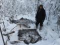 Житель Якутии незаконно добыл двух лосей на сумму 800 тысяч рублей
