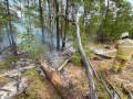 Два локальных пожара ликвидировали в районах Якутии