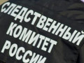 Криминалистов СК РФ направят в Якутию для расследования дела о пропавших в Синске девочках