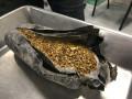 Россыпное золото на сумму более семи млн рублей изъяли у жителя Алданского района Якутии