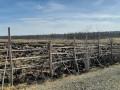 Пожар произошел на сельхозугодьях в Оймяконском районе Якутии